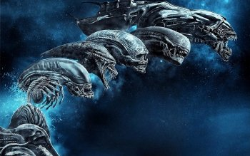 58 Xenomorph Hd Wallpapers Background Images Wallpaper Abyss