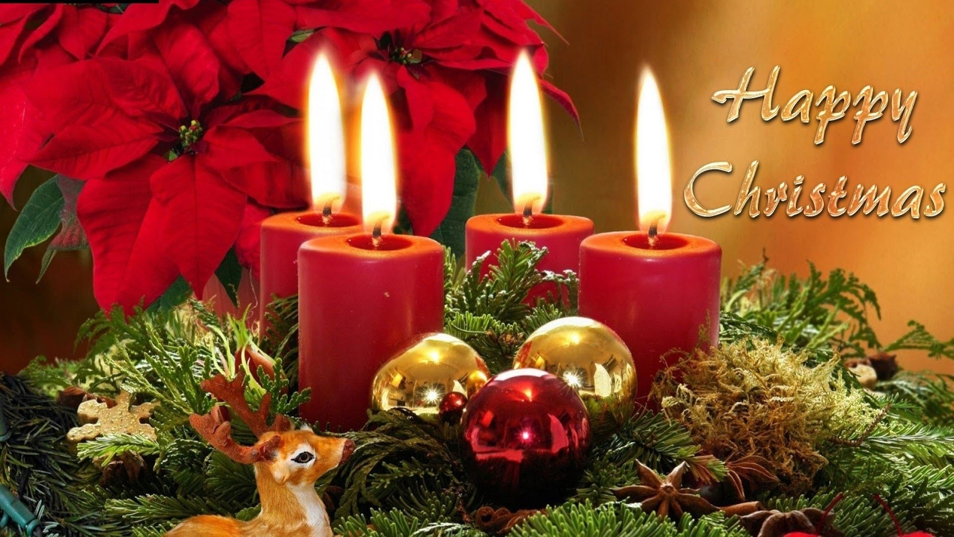 Holiday - Christmas  Decoration Candle Merry Christmas Flower Reindeer Wallpaper