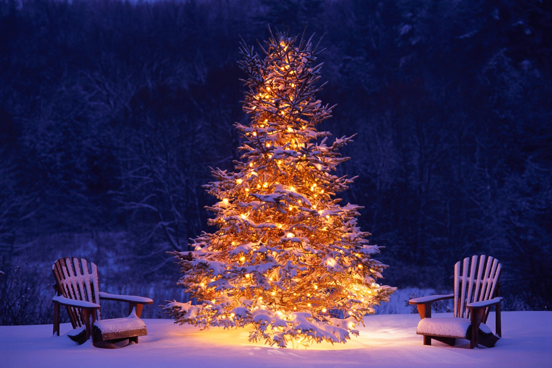 Holiday - Christmas  Christmas Tree Tree Ligths Snow Winter Chair Wallpaper