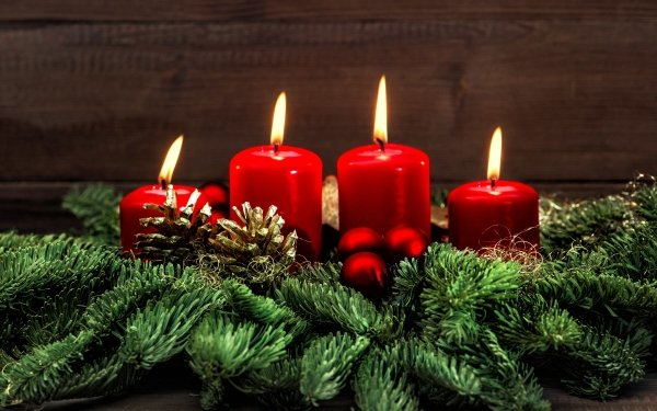 Holiday Christmas Decoration Candle Red Pine Cone HD Wallpaper   Background Image