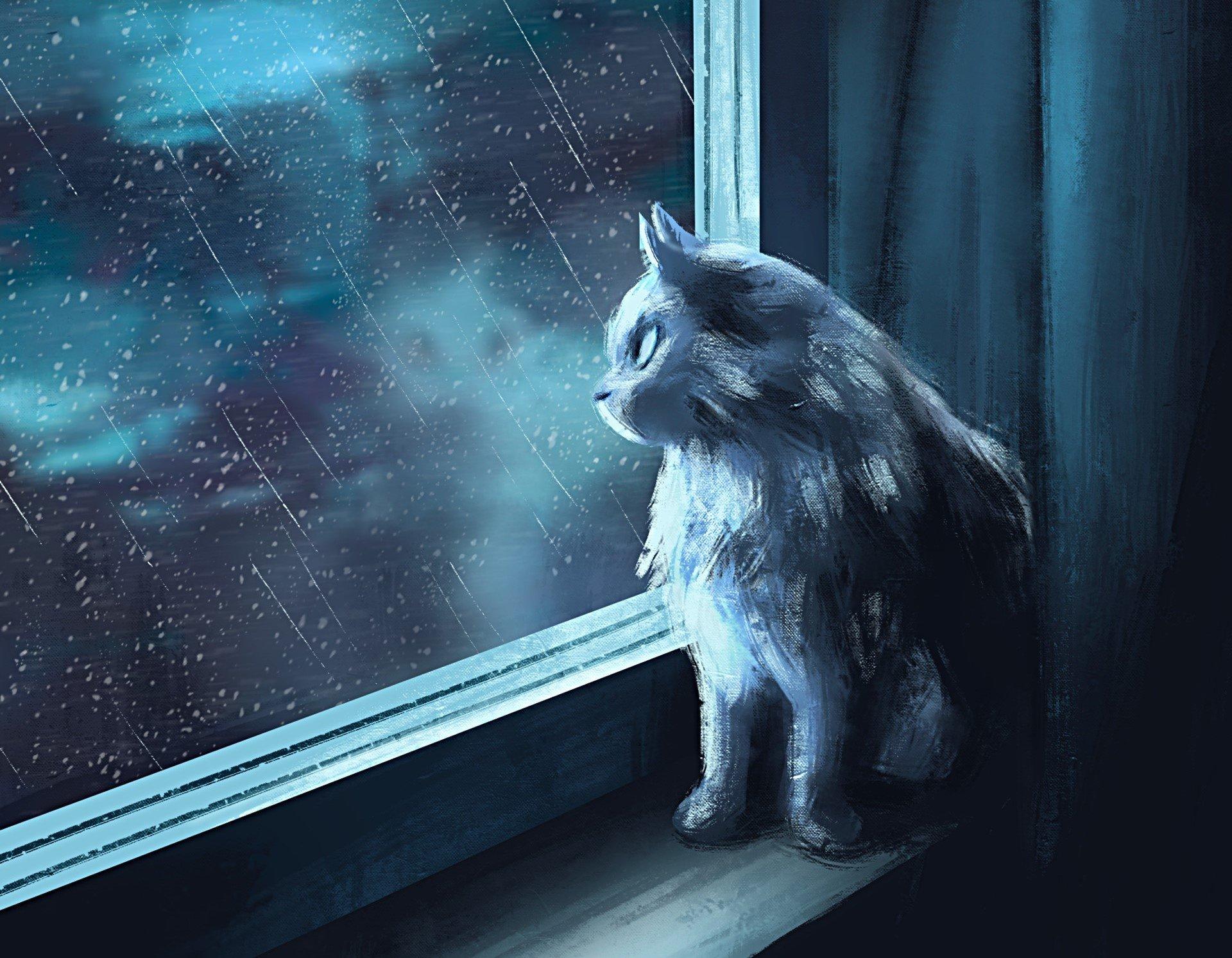 Risultati immagini per gatto fantasy wallpaper