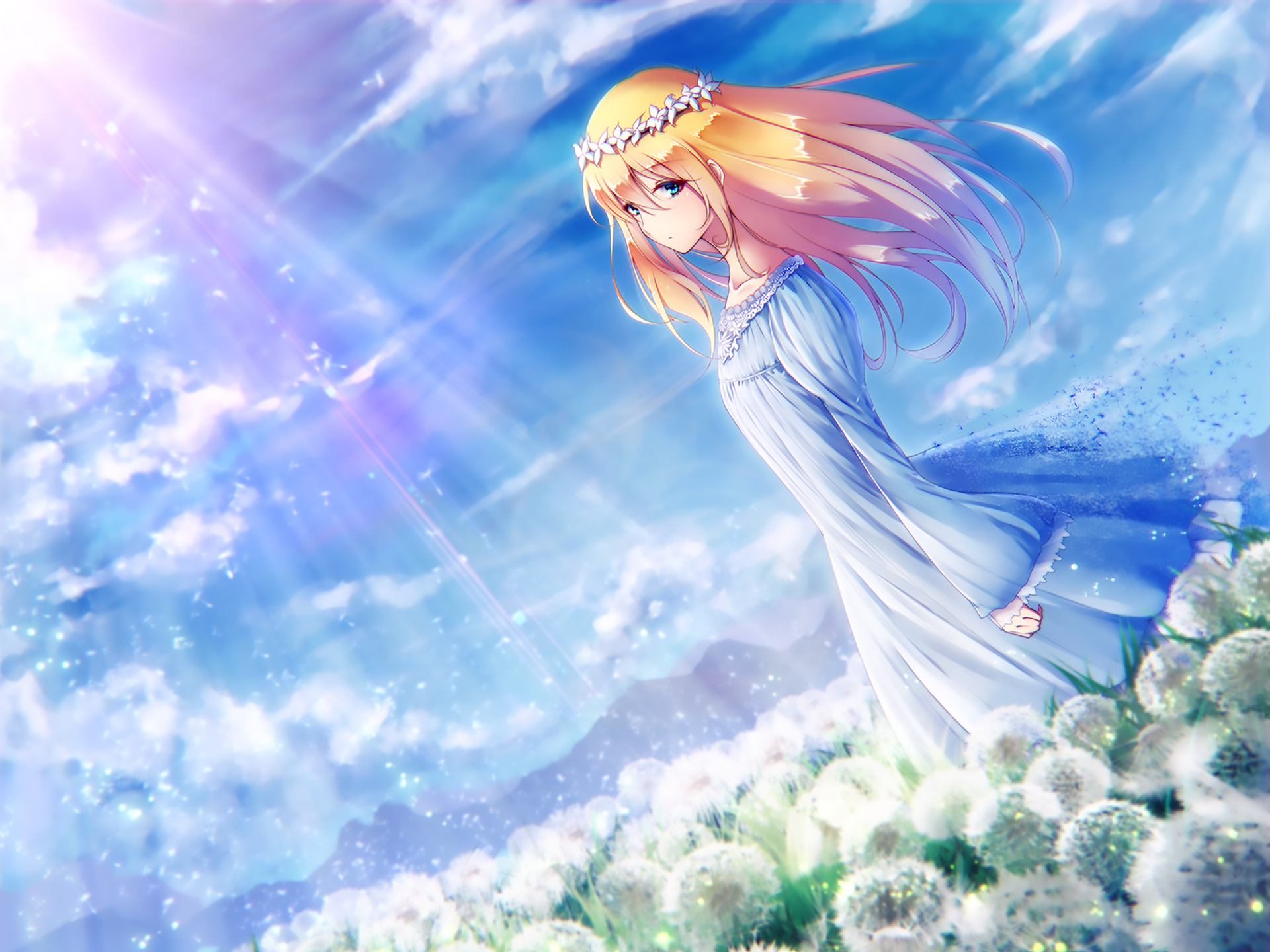 Wallpapers ID:893507