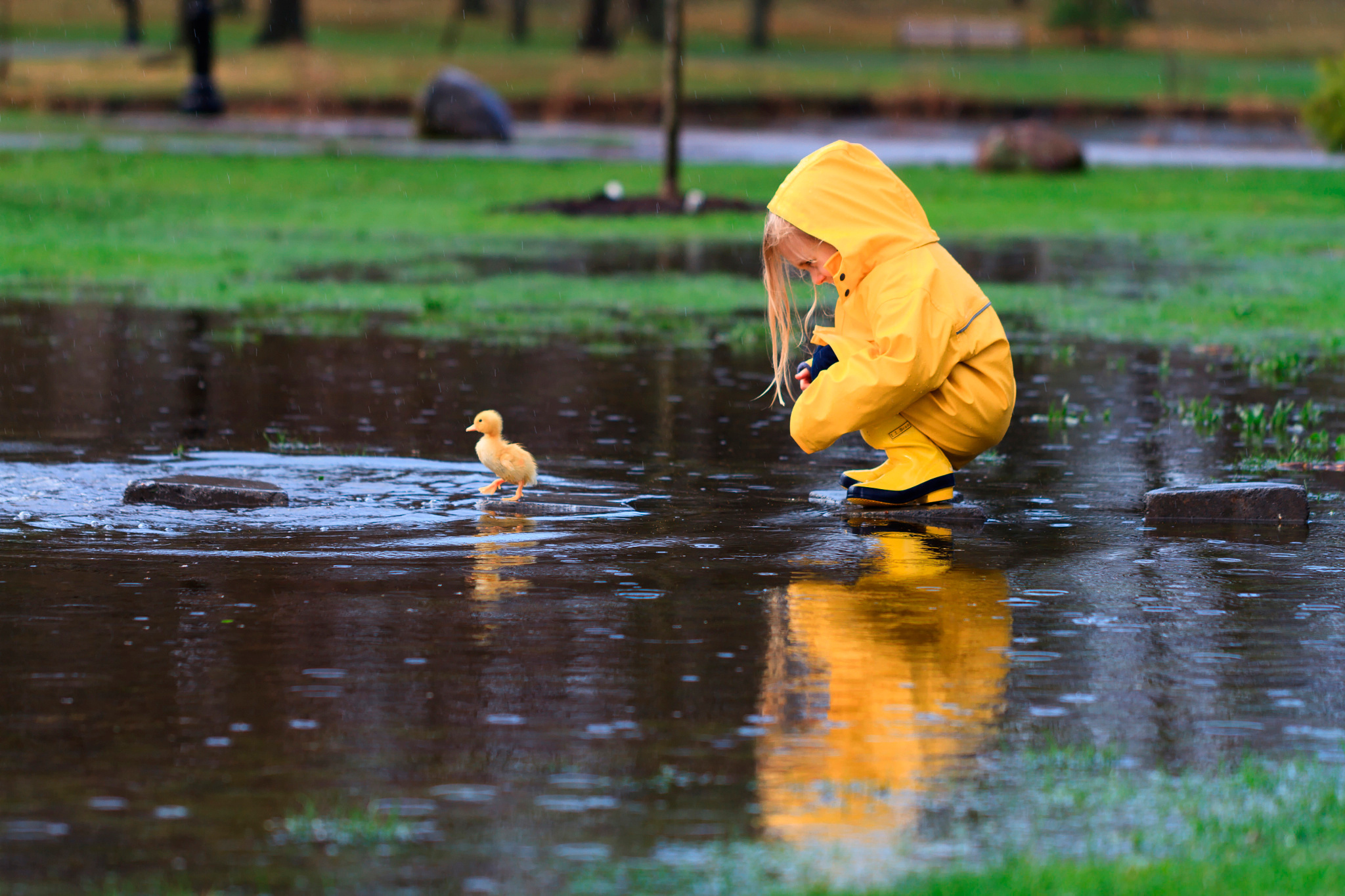 Little Girl And Duckling In The Rain Hd Wallpaper