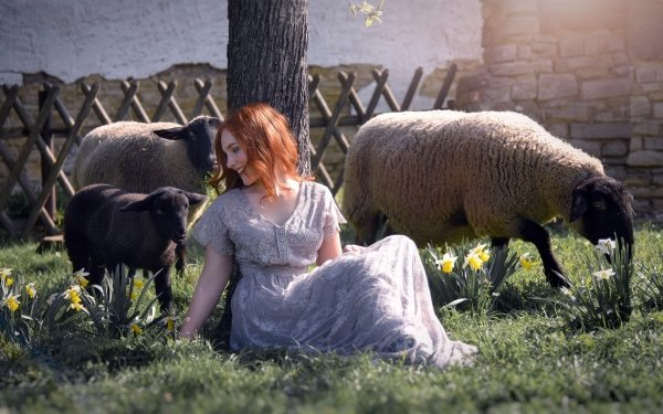 Women Mood Model Redhead Dress Smile Daffodil Sheep HD Wallpaper   Background Image