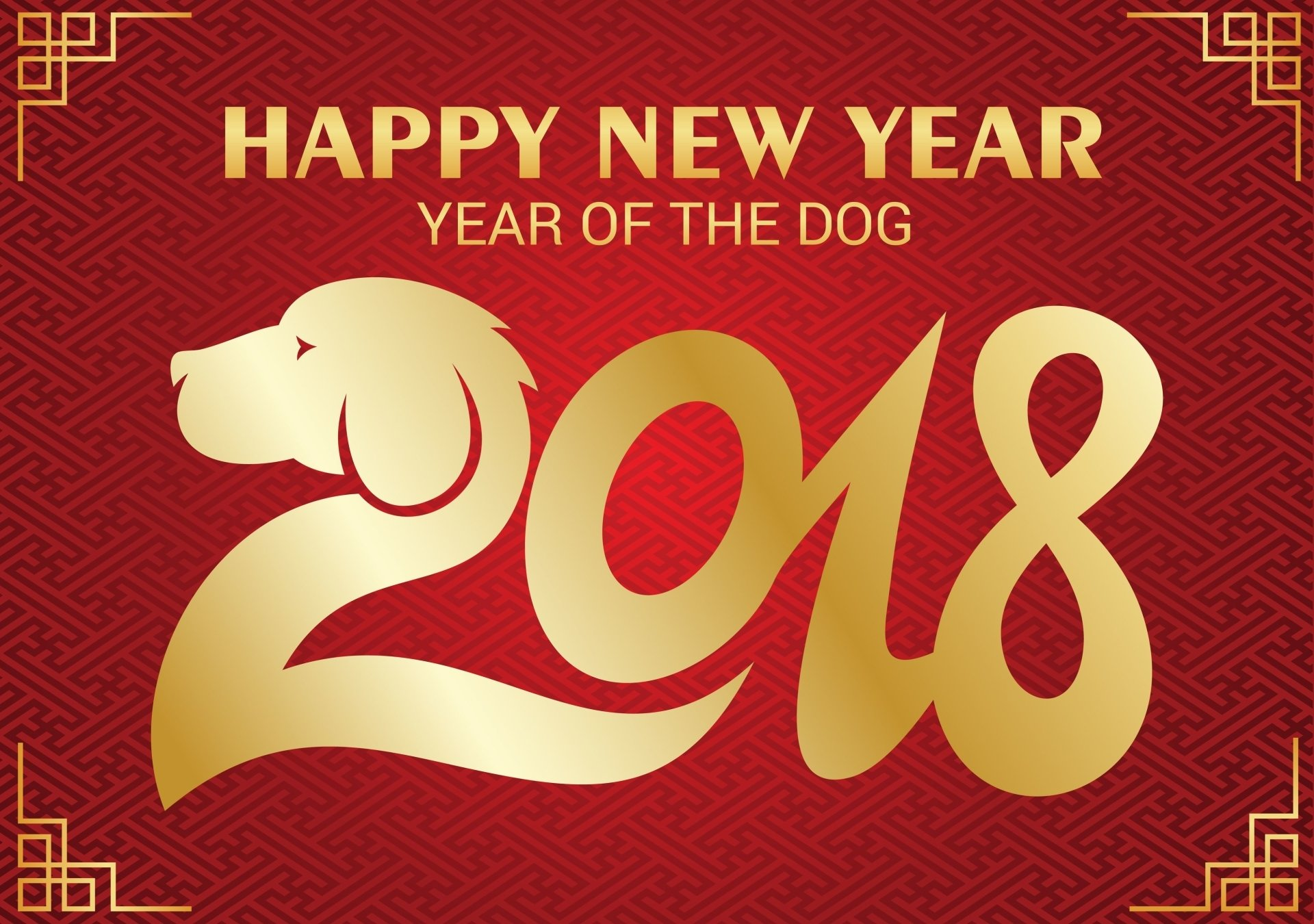 Holiday - Chinese New Year  New Year Dog Red Wallpaper