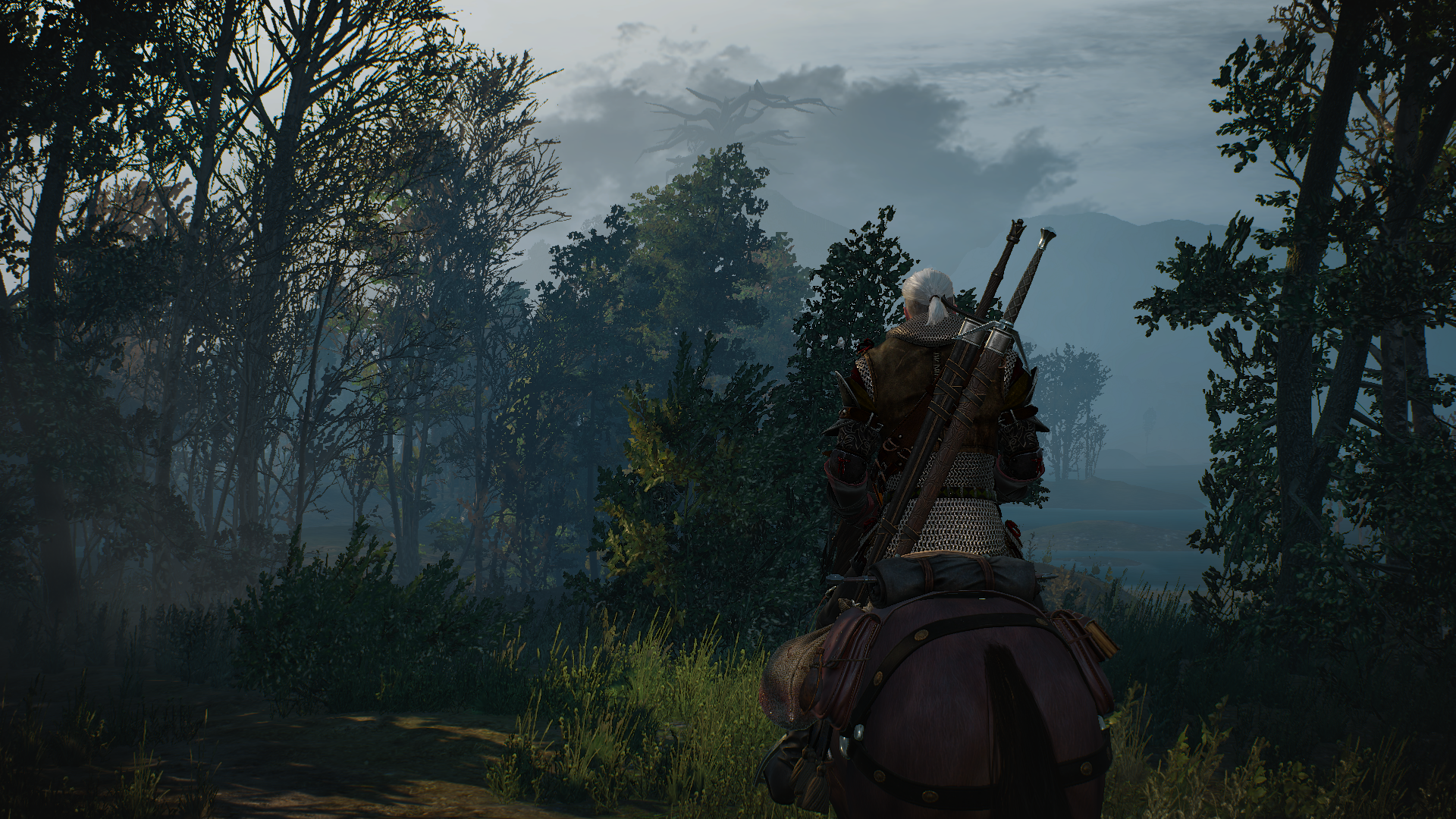 The Witcher 3 Wild Hunt Road To Vellen Hd Wallpaper