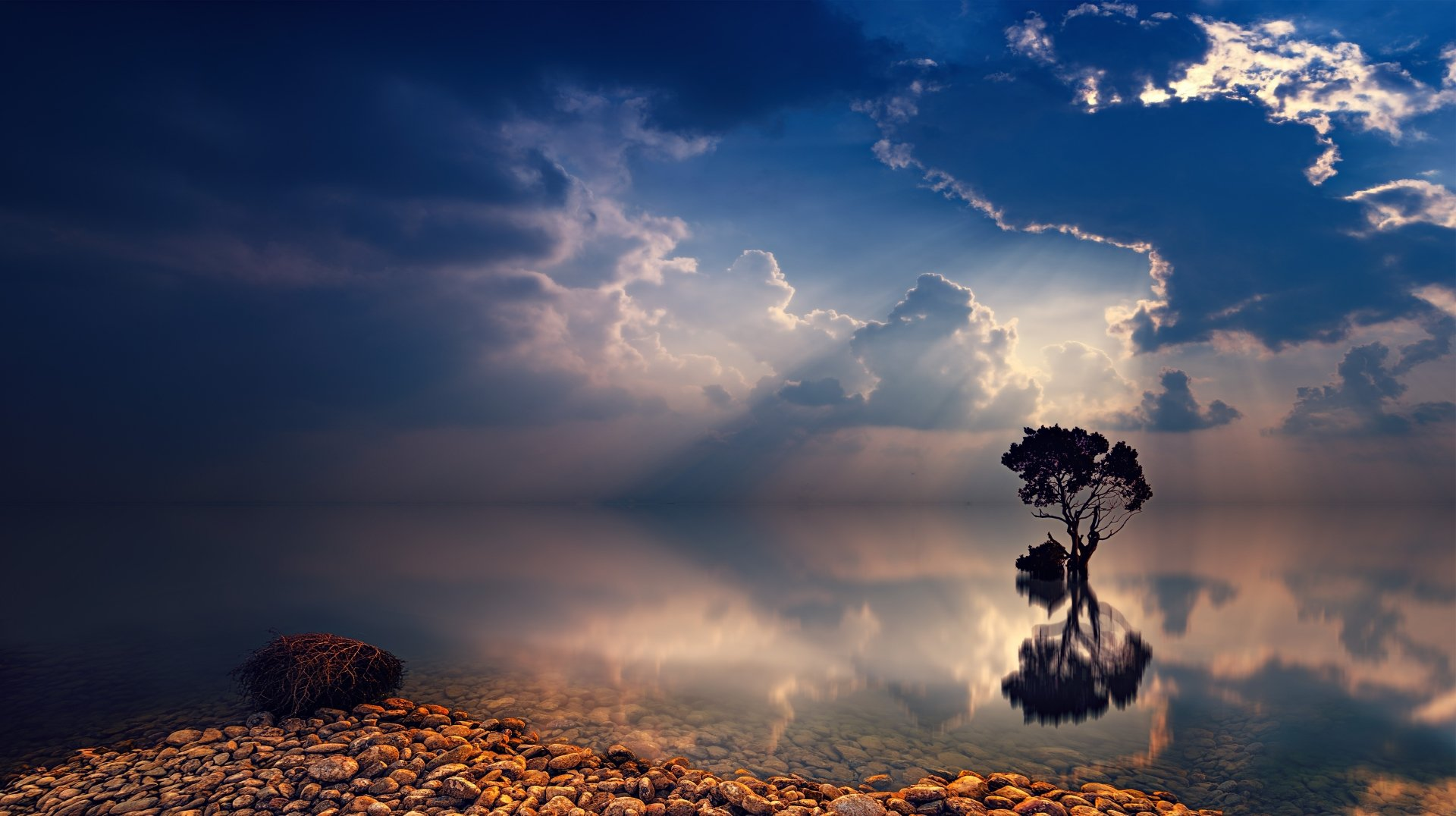 Earth - Tree  Ocean Reflection Stone Sunbeam Cloud Nature Twilight Lonely Tree Wallpaper