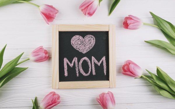 Día festivo Día de la Madre Tulipán Flor Pink Flower Fondo de pantalla HD | Fondo de Escritorio