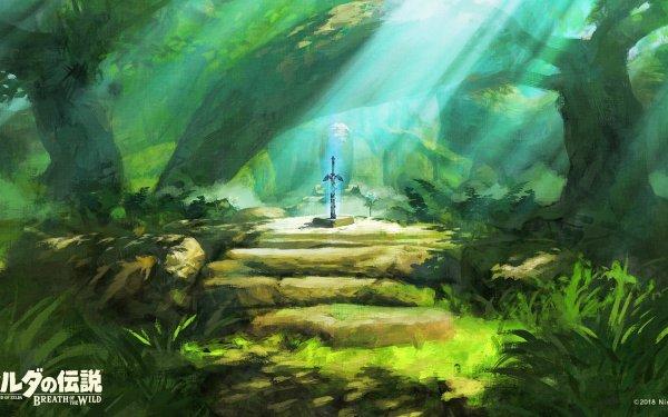 Video Game The Legend of Zelda: Breath of the Wild Zelda Master Sword HD Wallpaper   Background Image