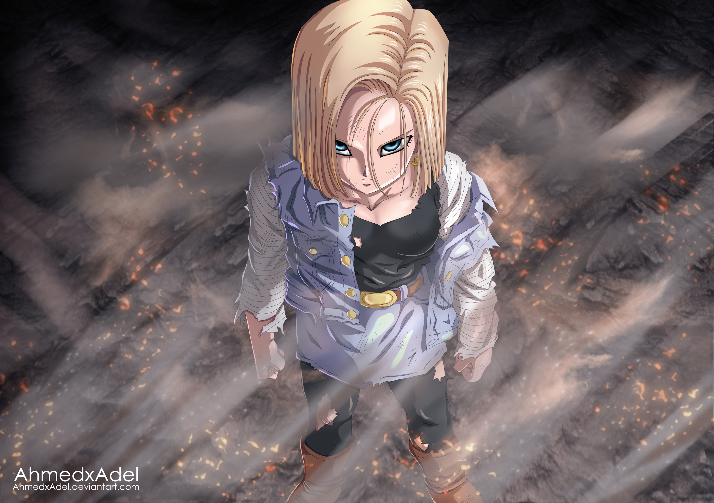 Android 18 hd wallpaper background image 2740x1930 - Free dragonfly wallpaper for android ...