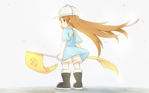 Anime Cells at Work! Platelet HD Wallpaper | Background Image
