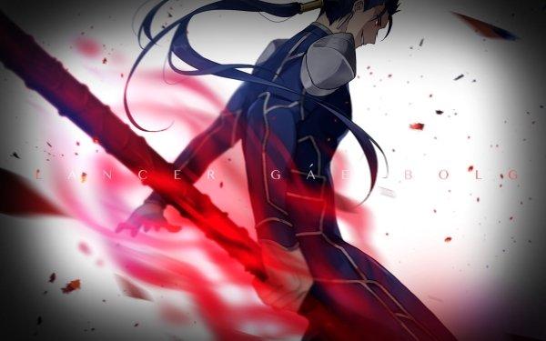 Anime Fate/Stay Night Fate Series Cu Chulainn HD Wallpaper | Background Image