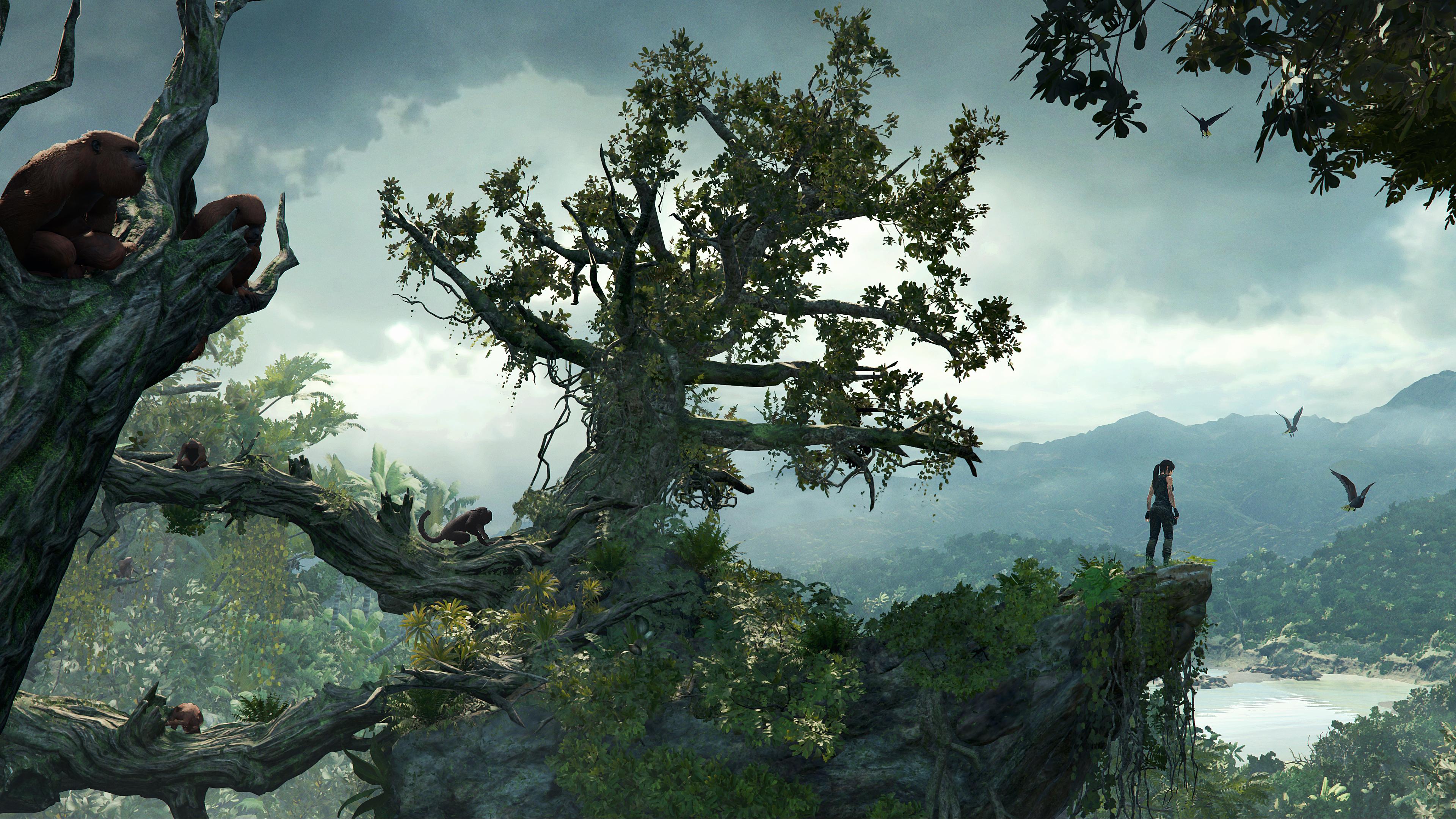 Shadow Of The Tomb Raider Tree And Lara 4k Ultra Hd Wallpaper