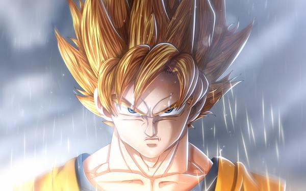 Anime Dragon Ball Super Dragon Ball Goku Super Saiyan HD Wallpaper | Background Image